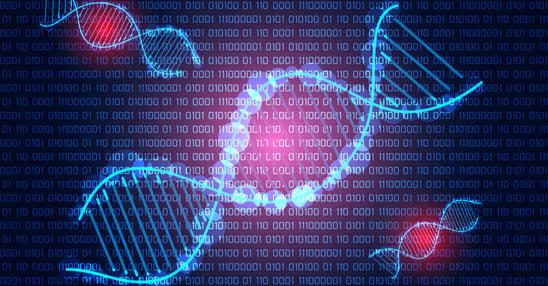 6 stappen informatiebeveiliging DNA