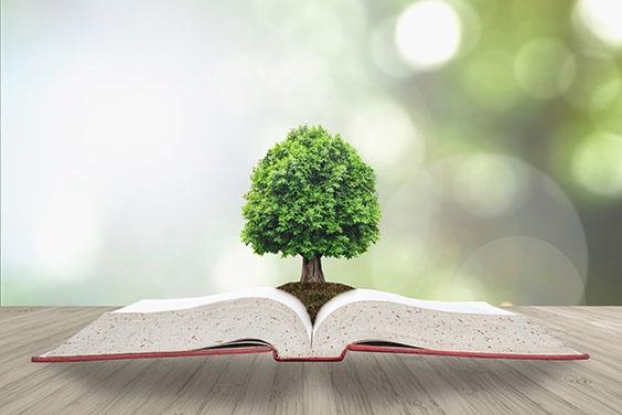 ISO 14001: Hoe brengt u milieuwetgeving voor uw organisatie in kaart?